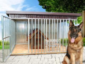 Kojce dla psów